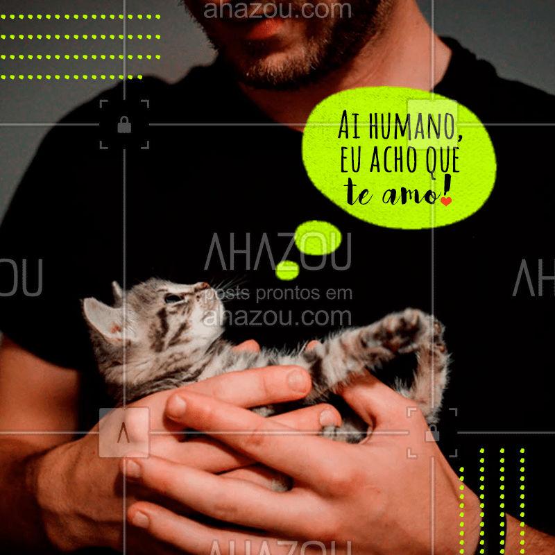 E ainda há quem diga que não somos amorosos, só porque somos os verdadeiros donos da casa e mandamos em tudo, até nos humanos! Eu hein! ??  #Pets #AhazouPets #Gatos #LoucosporGatos #LoucosporPets #Gateiros