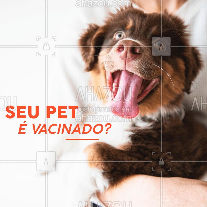 Seu animalzinho já tomou todas as vacinas que deveria esse ano? É bom sempre estar atento! #pet #ahazou #vacina