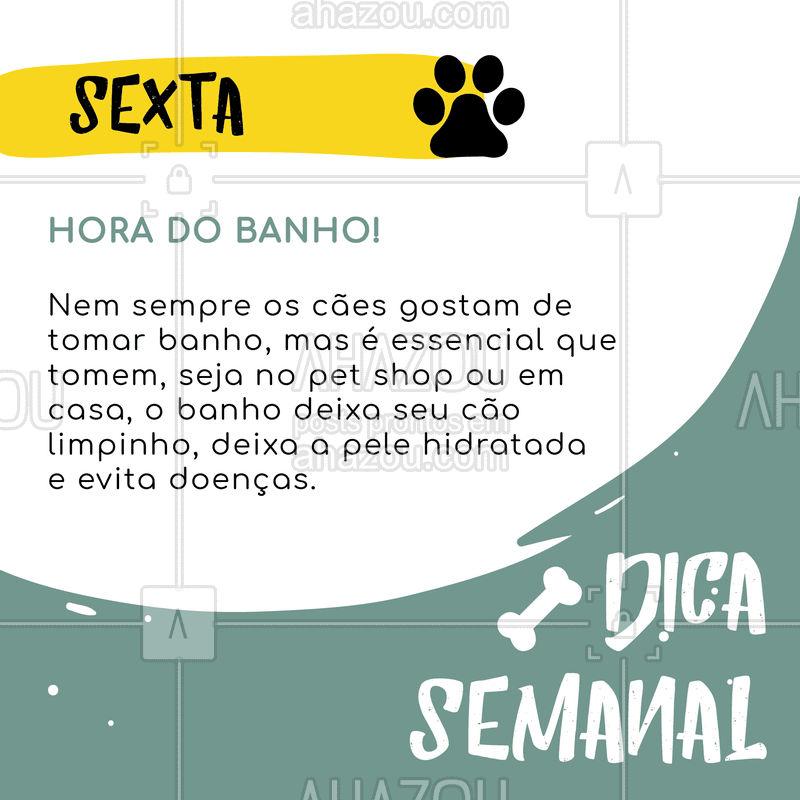 Confira essa dica incrível pra fazer a sua vida e a do seu amigo bem mais feliz! ?? #cachorro #pet #ahazou #dica