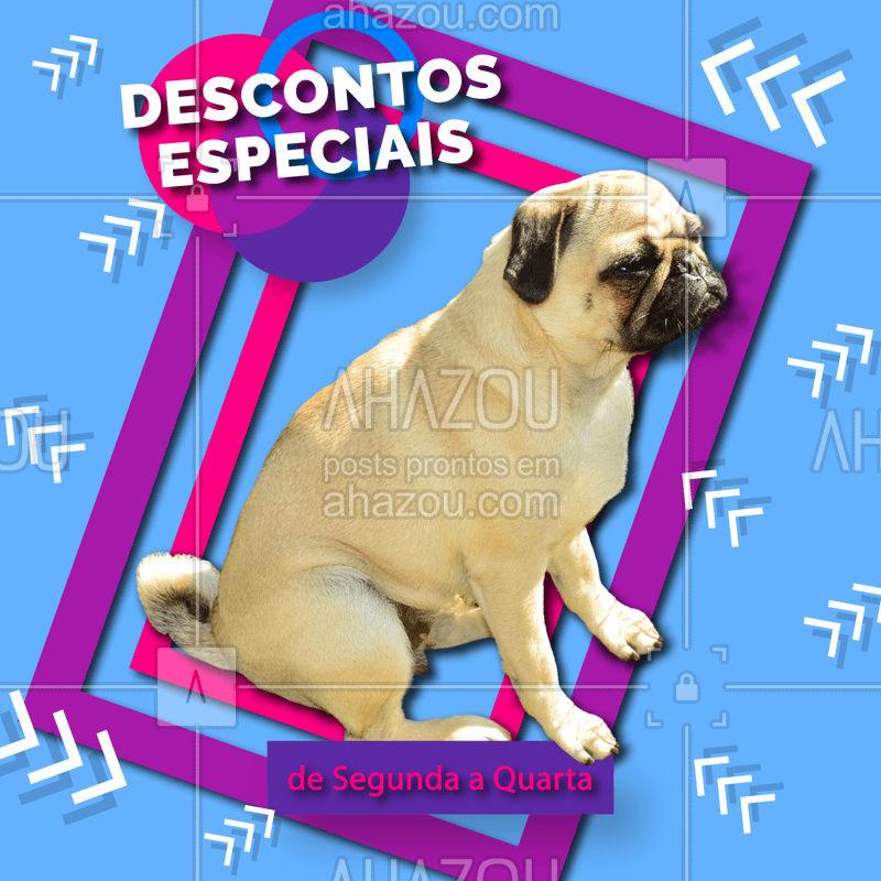 Conheça os pacotes mais incríveis de beleza para o seu pet, com descontos especiais de segunda a quarta. Entre em contato pelo nosso telefone XXXX #pet #beleza #petshop #ahazou #promocao
