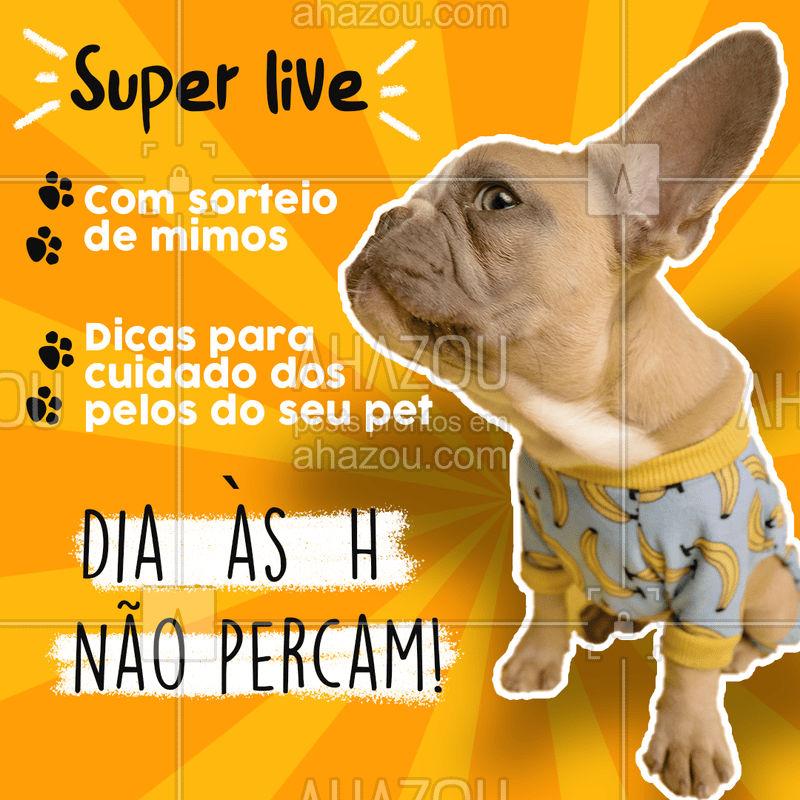 Venha participar da nossa live e ficar por dentro de dicas para o cuidado do seu pet e tire suas duvidas!! Também vai rolar sorteio de mimos. Não percam!! ❤???? #AhazouPet #live #aovivo #dicasparapet #pet #animal #cachorros #alimentação #gatos #lovepet #petlovers #petsofinstagram #ilovepets #dogs #cats