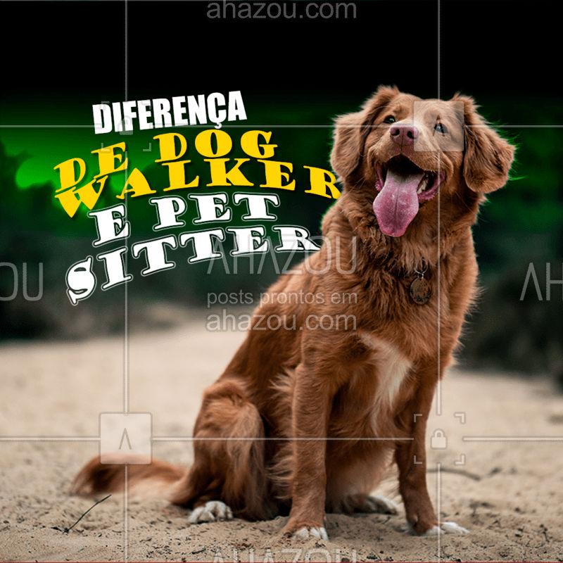 Dog walker oferece o serviço de passear com seu pet, já o pet sitter ele tem como função cuidar, levar para passear, brincar, enquanto o dono está ausente. #AhazouPet  #petsitting #petsitter #dogwalkersofinstagram #dogwalk #dogwalkerlife #dogsofinstagram