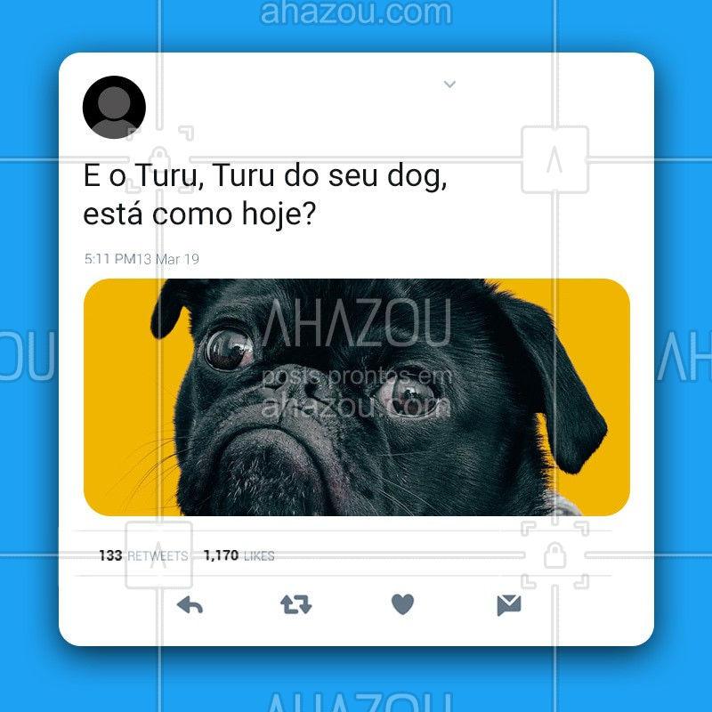 Esse Turu, Turu, Turu aqui dentro...? está pedindo muito carinho hoje.? Conta pra gente como está o humor do seu pet hoje. Ah, pode postar a fotinha dele aqui! #esseturuturu #sandyejunior #pet #dog #ahazoupet #cafrinho #petlovers