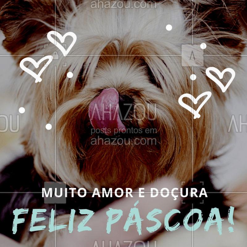Muito amor, harmonia e paz nesta Páscoa para você e seu pet!  #pascoa #ahazou #ahzpascoa #ahazoupet #felizpascoa