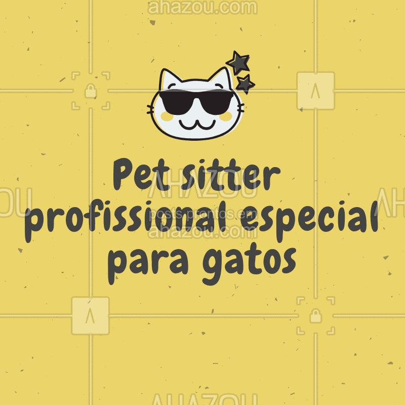 Você sabia que, para os gatos, trocar de casa pode ser super estressante? ? Os gatos naturalmente se apegam e se sentem mais confortável na sua própria casa. Por isso, no caso dos gatinhos, a Hospedagem Pet pode não ser a melhor escolha! A melhor escolha ocm certeza é um pet sitter profissional, que poderá passar um tempo com o gato, brincar com ele, alimentá-lo e dar carinho, para depois deixar o pet curtir seu momento sozinho! ? #pet #ahazoupet #gato #pets #petsitter