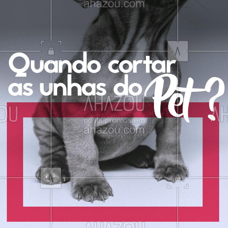 Fique atento aos sinais! ? Gatos: você pode apertar, de leve, as almofadinhas das patinhas, para que as unhas fiquem expostas. Assim você vê se as unhas do seu pet já estão grandes demais! ? Cachorros: quando as unhas começam a fazer barulho no piso, chegou a hora de cortá-las! Unhas grandes podem causar dor e desconforto ao animal. #pets #animais #ahazou #cachorro #gato #petshop #veterinario