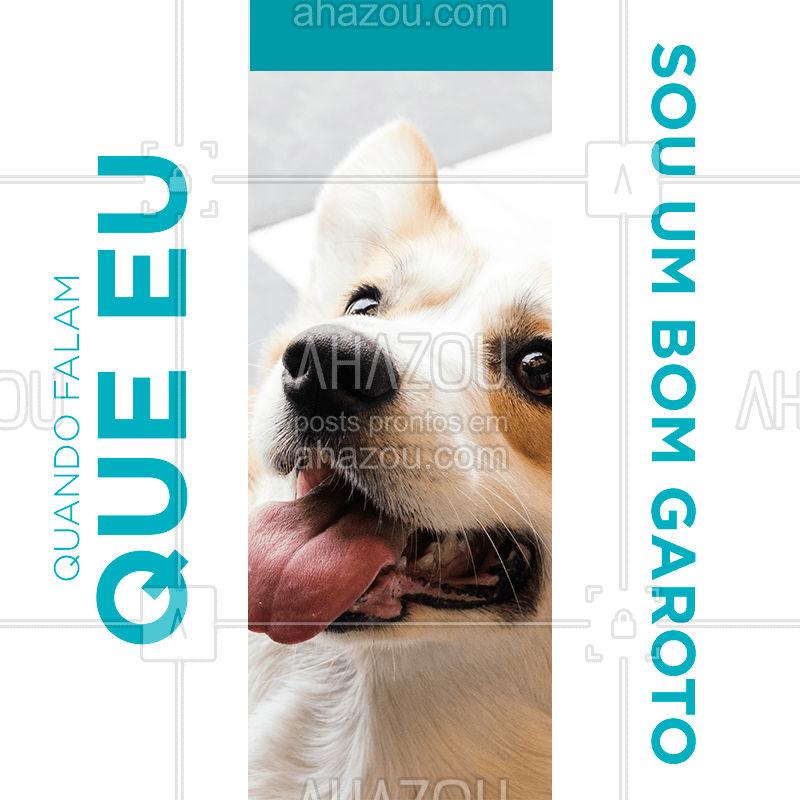 Você sabia que dá para adestrar seu pet em casa? Com paciência e alguns petiscos, é possível ensinar alguns truques e comandos importantes, como onde ir ao banheiro. #adestramento  #pet  #petlover  #petcare  #ahazoupet  #ahazou  #dog  #cachorro  #cat  #gato