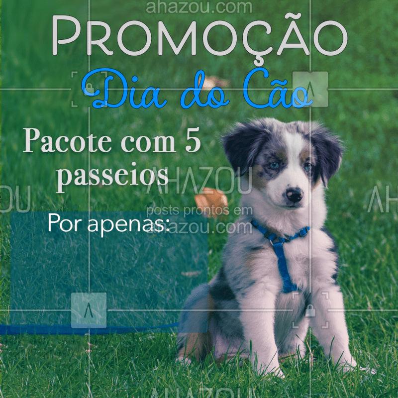 Dia 26 de agosto é o Dia do Cão, e para comemorar essa data, temos um pacote com valor imperdível, para alegrar o dia do seu cachorro! Entre em contato para adquirir o seu! #diadocao #promocao #AhazouPet  #dogwalkersofinstagram #dogwalkerlife #dogwalker