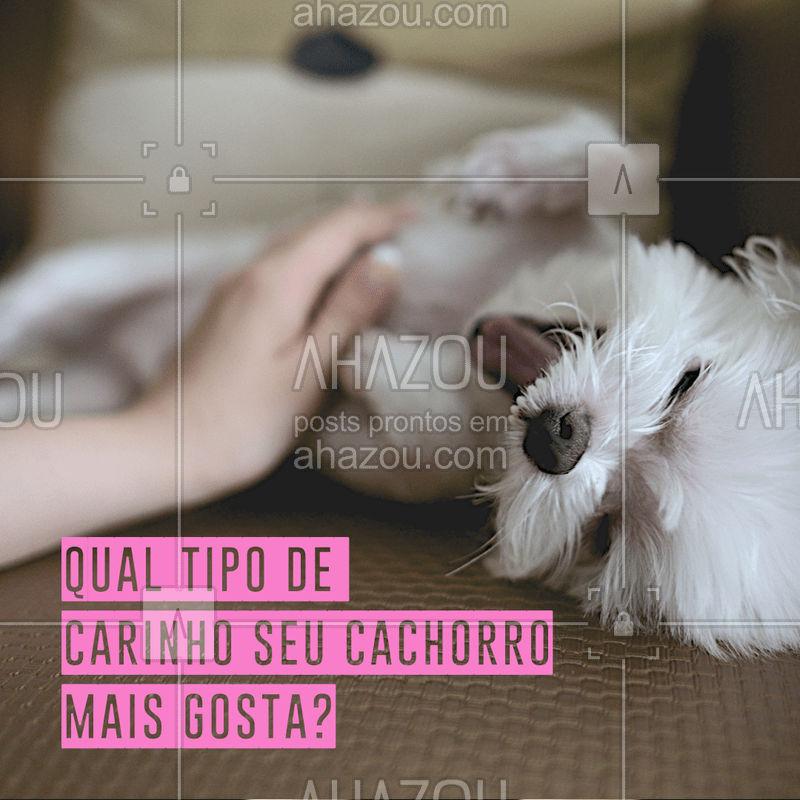 Comenta aqui qual carinho seu dog mais gosta ? #cachorro #ahazoupet #pet