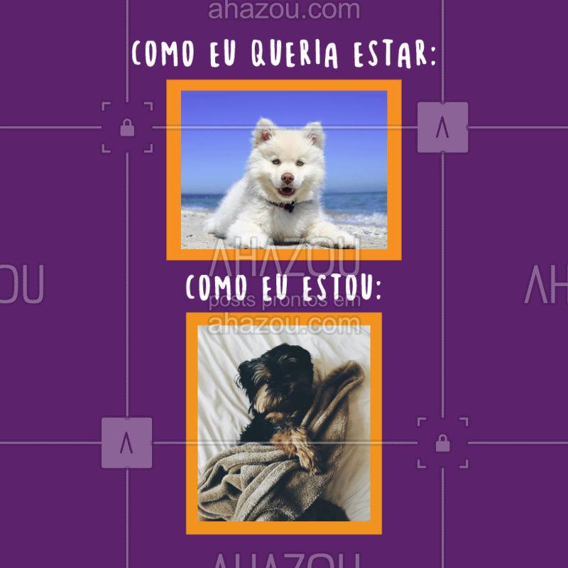 Não tá fácil para ninguém...  ??#petlover  #petcare  #veterinario  #ahazou #cachorro  #dog  #ahazoupet