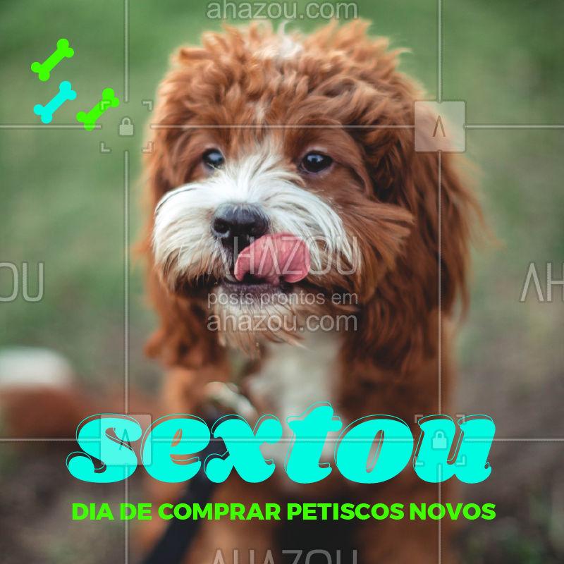 Seu pet também quer sextar! Corre pra cá pra comprar os petiscos que ele merece! #ahazoupet #petlovers