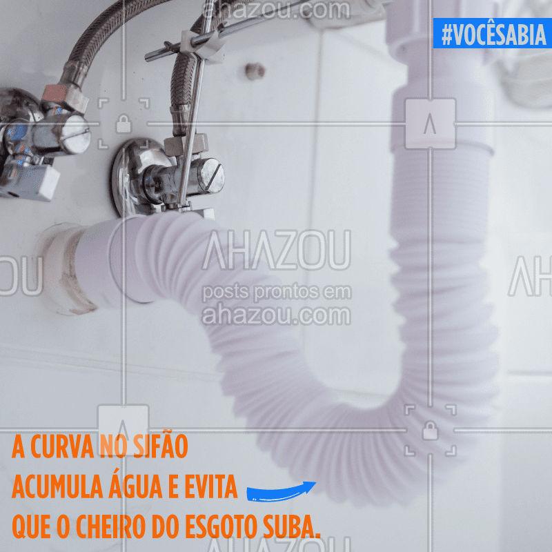 VOCÊ SABIA?  #encanador #canos #dicas #tips #ahazou #vocesabia #vocêsabia #sifão #encanamento #cano #pia