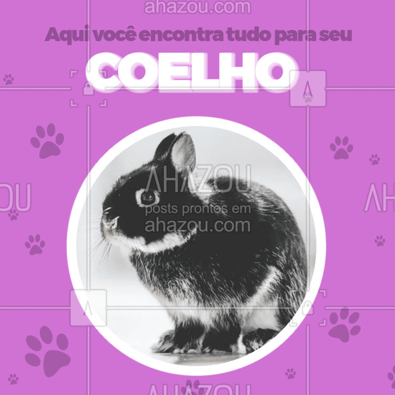Aqui você encontra tudo que é necessário para cuidar do seu bichinho!           #ahazou #petshop #pets #animaisdeestimacao
