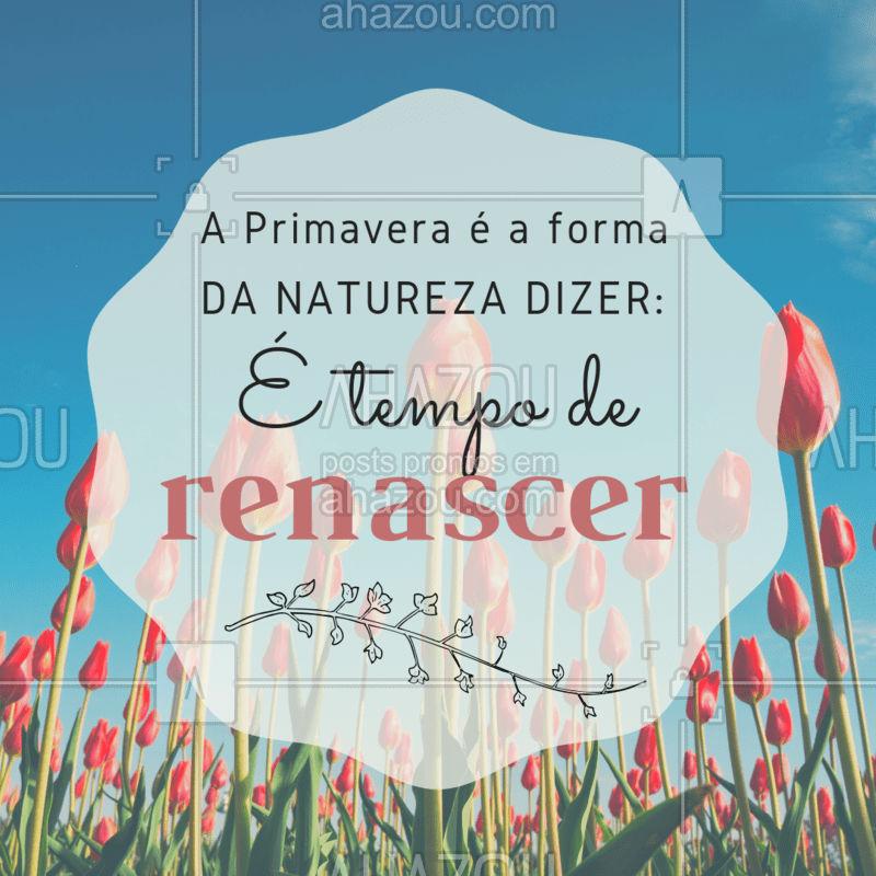 Que mensagem linda que a natureza nos passa com a chegada da Primavera. ? Quem aí ama essa estação? #primavera #ahazou #flores