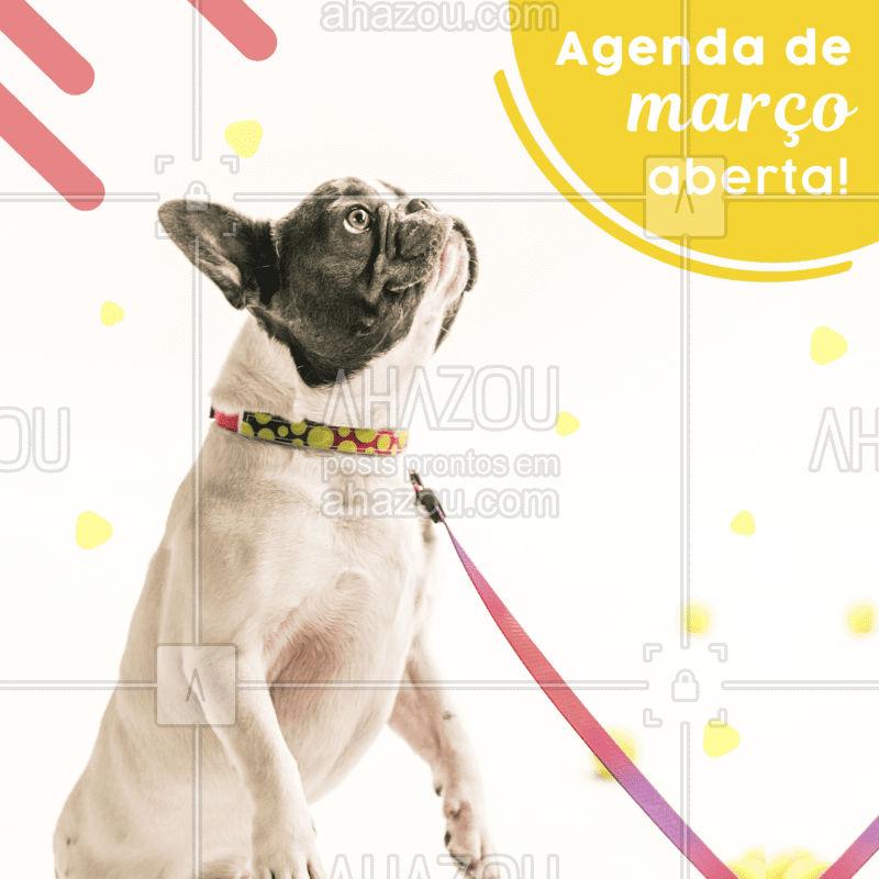 Marque aquele cuidado ou passeio que seu pet precisa, nossa agenda de março está aberta! #pet #petlovers #ahazoupet #março #agenda