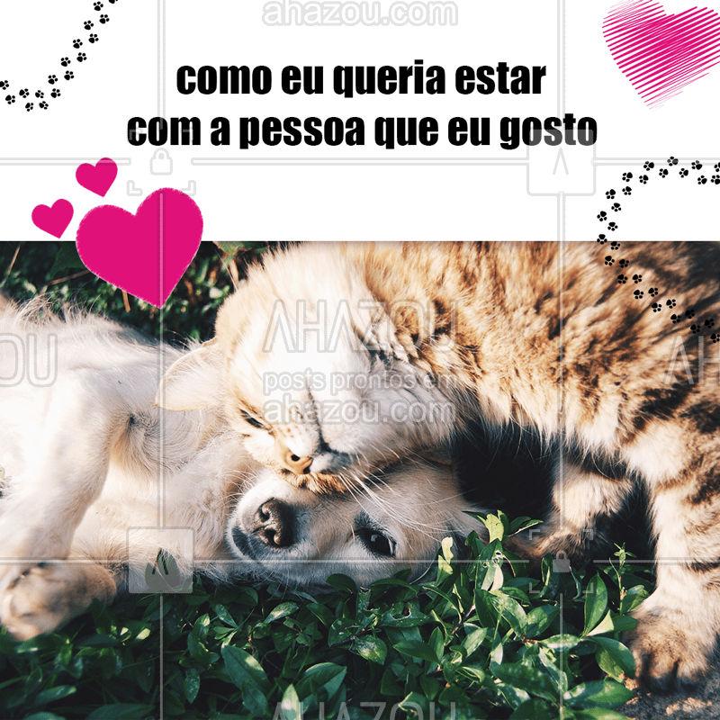 No mundo Pet tem muito amor envolvido! Mesmo que não dê pra ficar assim com a pessoa que você gosta, seu pet é garantia de aconchego no fim do dia <3 #petslove #ahazoupet
