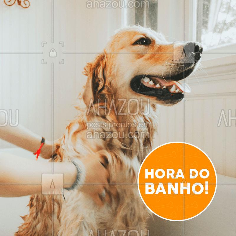 Tá na hora do banho! E o seu animalzinho, gosta de tomar banho? #pet #ahazou #banho