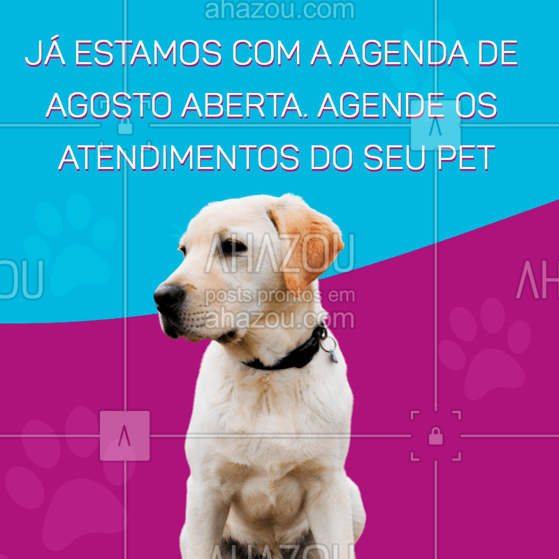 ??❤️?Que tal programar os atendimentos do seu pet para o mês de agosto? ?Entre em contato, já estamos com a agenda aberta.  #agosto #dog #cat #pets #AhazouPet  #dogsofinstagram #ilovepets #petlovers #petsofinstagram #petoftheday