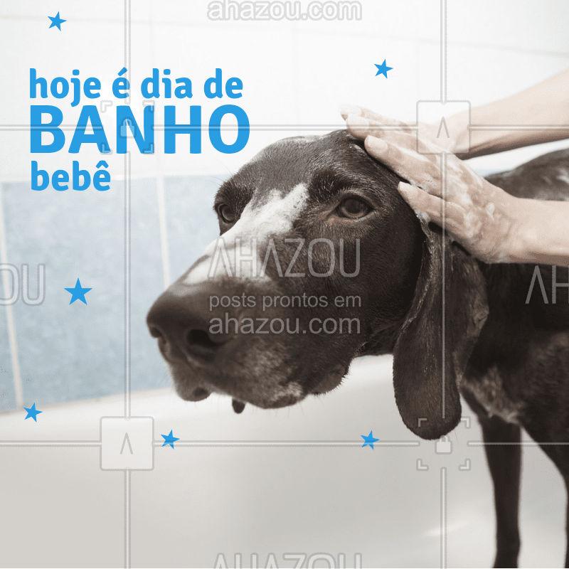 Já agendou o banho do seu bebê hoje? Então corre pra não ficar sem vaga! #pet #ahazoupet #amor #cuidados #banho
