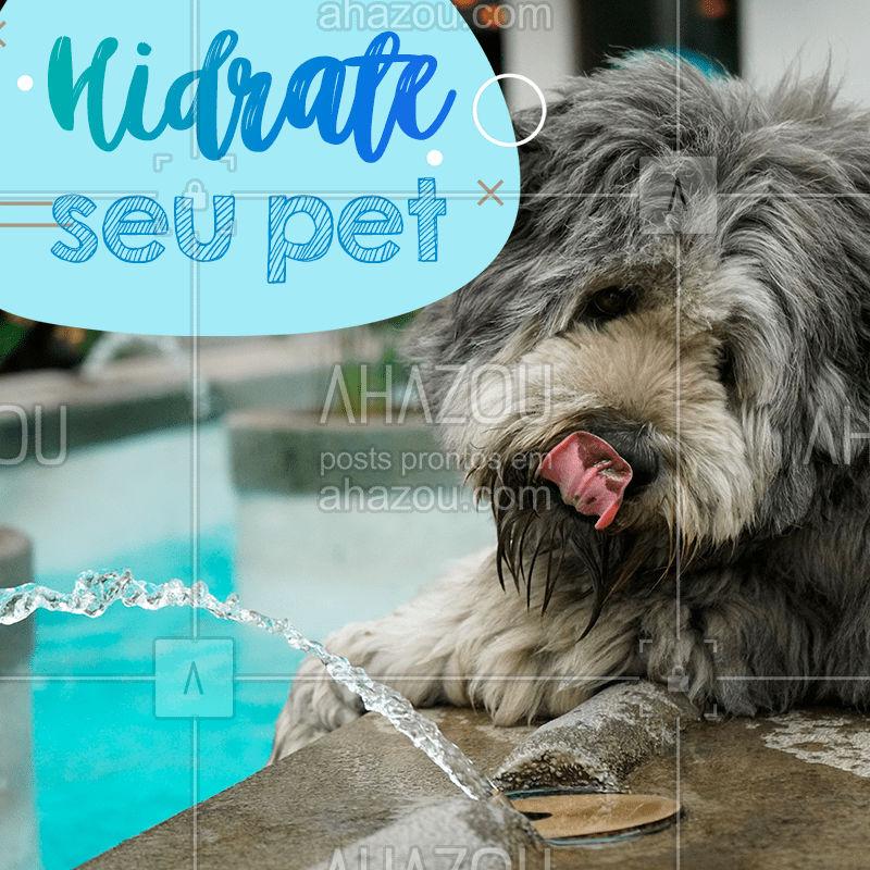 ⚠ É verão e está calor. Se a gente já sente que está queimando, imagina o nosso pet com aquela camada de pelo toda, certo?  Então pega uma vasilha bem grande e coloca água gelada até o topo para o coitadinho. ?  #Verão #Calor #Hidratação #Pet #Dog #Ahazou