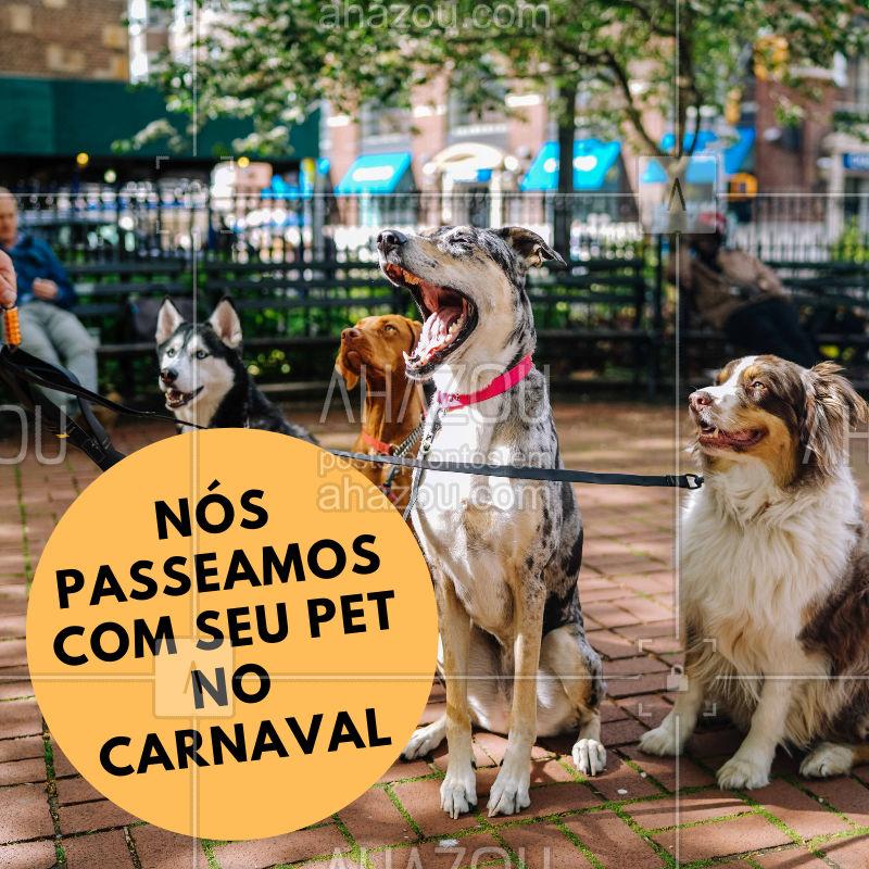 Vai curtir o carnaval? Deixa que nós passeamos com o seu pet #pet #dogwalker#ahazoupet #ahazou #cachorro