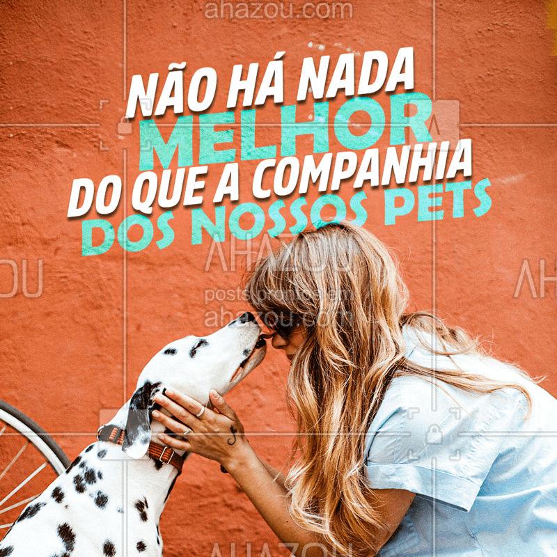 Não existe nada tão incrível como a companhia de nossos pets. Eles são repletos do mais puro amor e carinho!  #AhazouPet  #cats #dogsofinstagram #petoftheday #petlovers #petsofinstagram #dogs #ilovepets