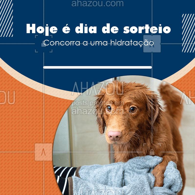 Hoje é dia de sorteio. Trazendo seu pet para tomar banho hoje você concorre ao sorteio de uma hidratação (inserir o tipo de hidratação). #sorteio #pet #banho #petlovers #petshop #AhazouPet # cachorro #gato #dogs #cats