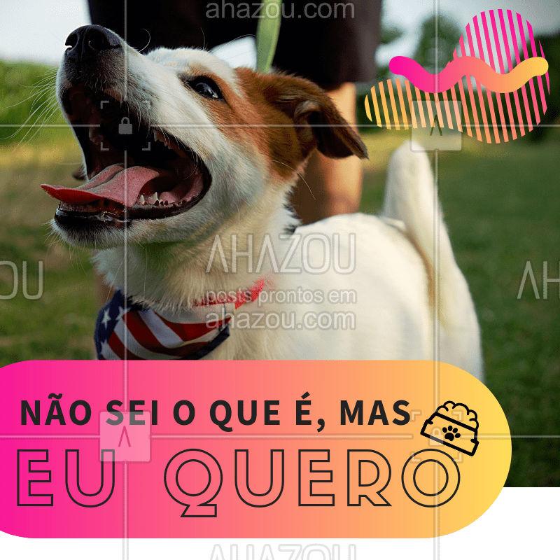 O pet de vocês também é assim? ???♀❤ #pet #ahazou #engraçado