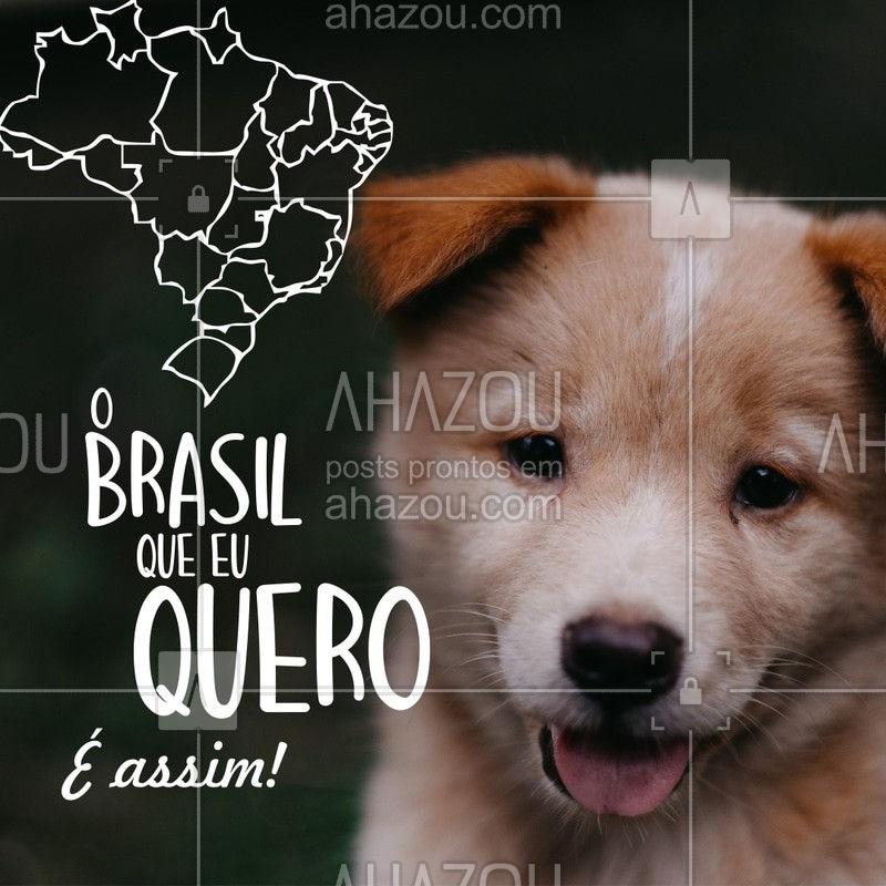 Quem aí também acredita que só os filhotes fofos podem salvar o Brasil? ?? #cachorro #filhote #puppy #ahazoupet #animais #petshop