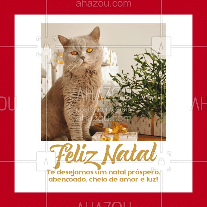 Passando para deixar meus votos de Feliz Natal para você e sua família! ??✨ #natal#feliznatal #ahazoupet #pet