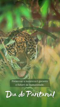 No dia de hoje é essencial frizarmos a importância desse bioma e de todas as florestas nacionais, chega de desmatamento! ? #ahazou #diadopantanal #bioma #natureza #preservar  #motivacional  #floresta